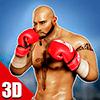 3d бокс - фактический удар