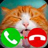 Скачать ложный вызов кошка игра 2 на андроид бесплатно