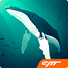 Скачать Tap Tap Fish - AbyssRium на андроид бесплатно