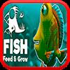 Кормить Рыбу и расти