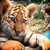 Скачать Wildlife Park на андроид бесплатно