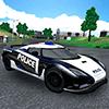 Экстрим-вождение авто полиции