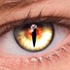 Скачать FoxEyes - Change Eye Color by Real Anime Style на андроид