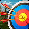 Скачать мастер по стрельбе из лука 3D на андроид бесплатно