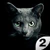 Найди кота 2. Бесплатно!