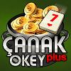 Скачать Çanak Okey Plus на андроид бесплатно