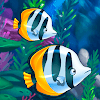 Fish Paradise - Ocean Friends