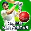 Скачать Cricket Megastar на андроид бесплатно