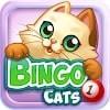 Скачать Bingo Cats на андроид бесплатно